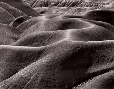 Bruce Barnbaum: Pewter Painted Desert (2004)
