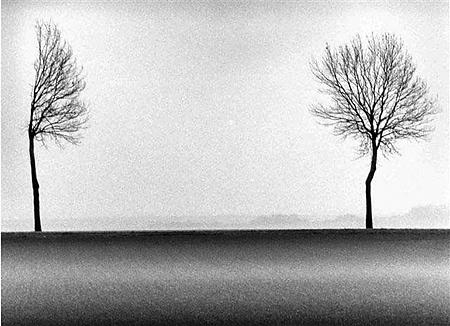 Philippe Brame: Fa és víz