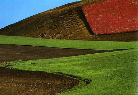 Franco Fontana: Imaginary Landscape, Italy (1998)