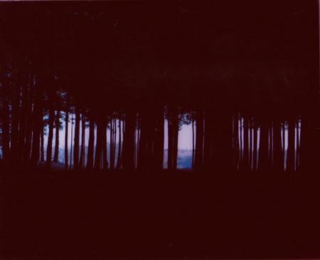 Maiko Haruki: Untitled (2003)