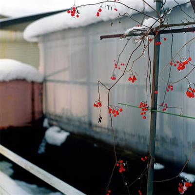 Mamiko Konishi: red