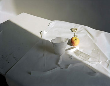 Laura Letinsky: Untitled #22 (2007)