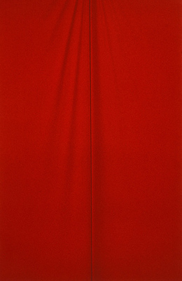 Anne MacDonald: Cloth (Red lycra) (2004)