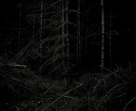 Yann Mingard: Twilight