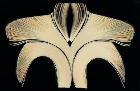 Andrea Onofri: Disegni di Carta 1