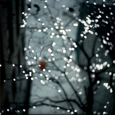 Toshihiro Oshima: l'empire des lumieres: twinkle