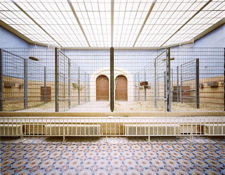 Michael Schnabel: Elephants, Basel (2001)